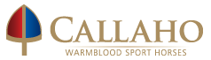 Callaho Logo